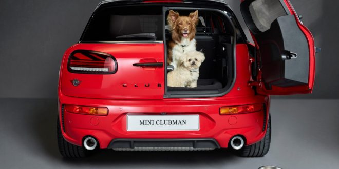 MINI teams up with Dogs Trust to promote pet-friendly travel